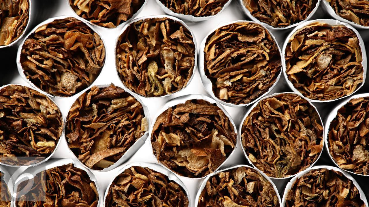 Mempertimbangkan daya beli, harga rokok di Indonesia sudah mahal